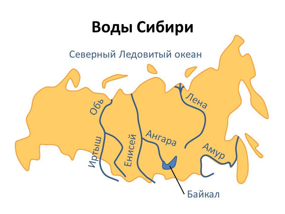 Воды Сибири Лена Северный Ледовитый океан Обь Иртыш Енисей Ангара Амур Байкал