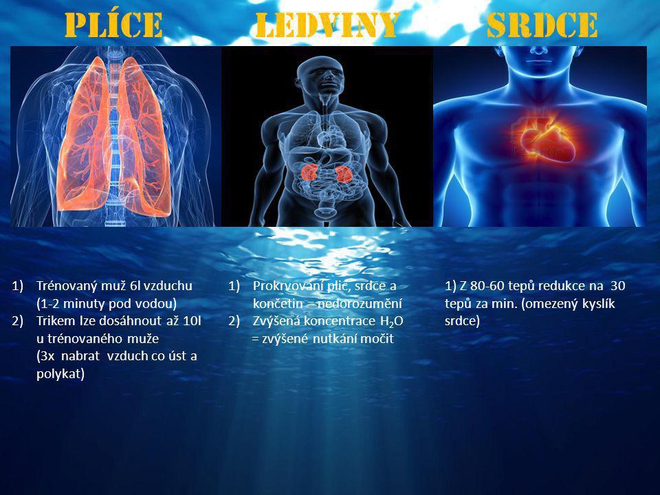 PlíceLedvinySrdce 1)Trénovaný muž 6l vzduchu (1-2 minuty pod vodou) 2)Trikem lze dosáhnout až 10l u trénovaného muže (3x nabrat vzduch co úst a polykat) 1)Prokrvování plic, srdce a končetin = nedorozumění 2)Zvýšená koncentrace H 2 O = zvýšené nutkání močit 1) Z 80-60 tepů redukce na 30 tepů za min.