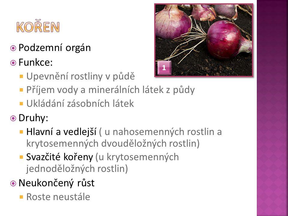 KVASNIČKOVÁ, L.Ekologický přírodopis 6. Fortuna, 2002.