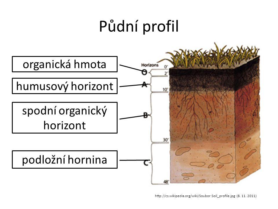 Půdní profil organická hmota http://cs.wikipedia.org/wiki/Soubor:Soil_profile.jpg (8. 11. 2011) humusový horizont spodní organický horizont podložní h