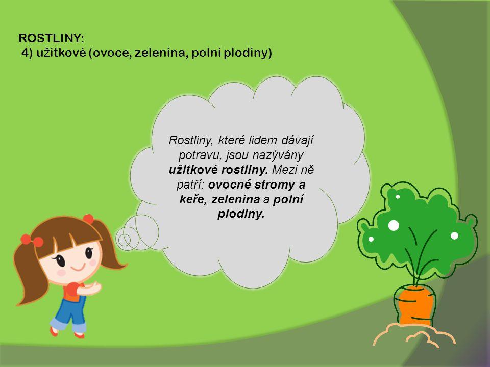 ROSTLINY: 4) u ž itkové (ovoce, zelenina, polní plodiny) Rostliny, které lidem dávají potravu, jsou nazývány užitkové rostliny.
