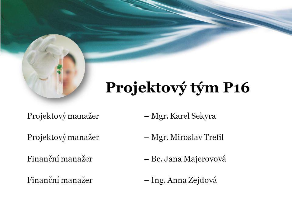 Projektový tým P16 Projektový manažer – Mgr. Karel Sekyra Projektový manažer – Mgr. Miroslav Trefil Finanční manažer – Bc. Jana Majerovová Finanční ma