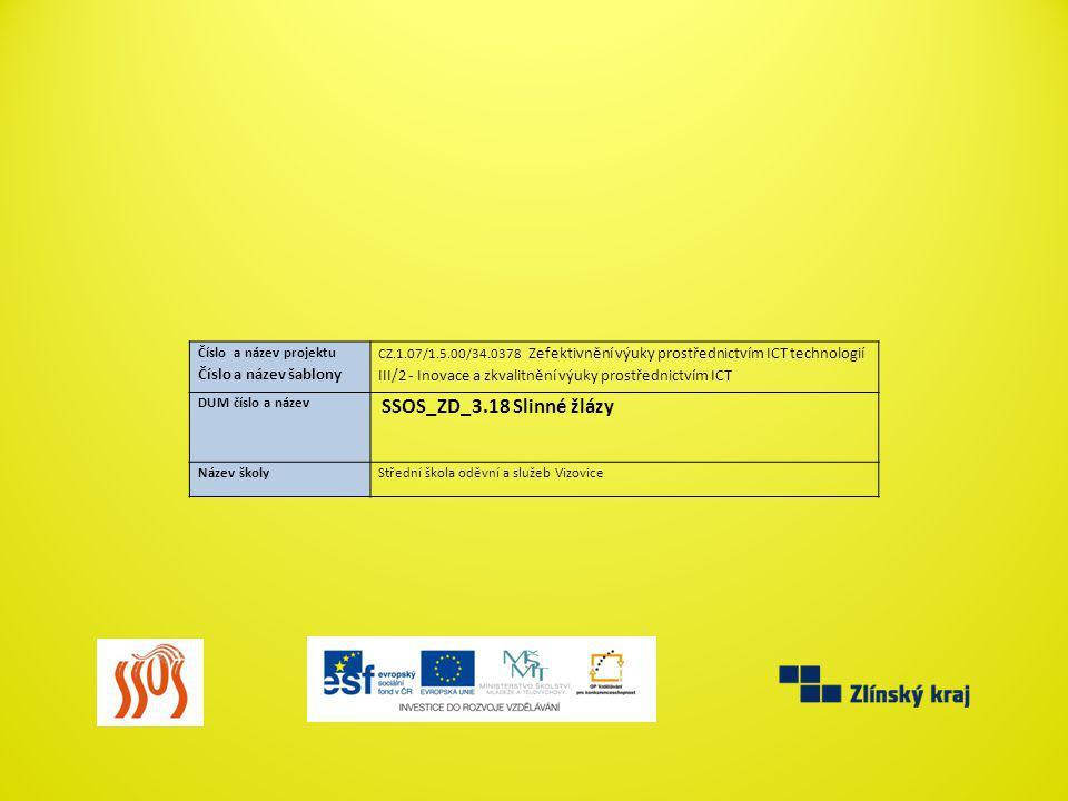 Číslo a název projektu Číslo a název šablony CZ.1.07/1.5.00/34.0378 Zefektivnění výuky prostřednictvím ICT technologií III/2 - Inovace a zkvalitnění v