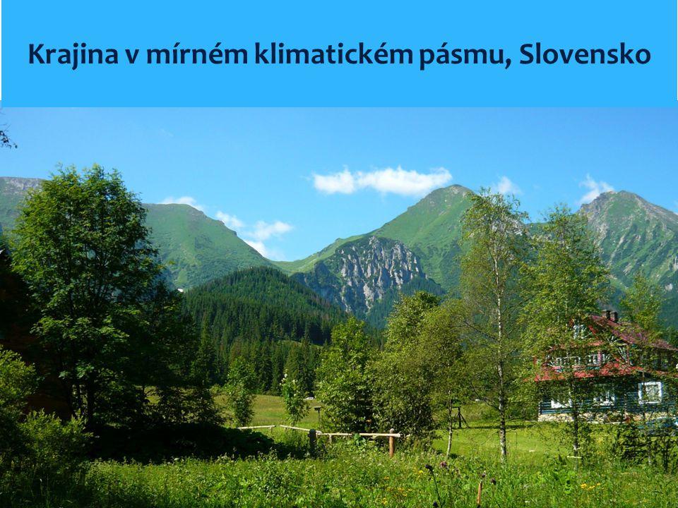 Krajina v mírném klimatickém pásmu, Slovensko