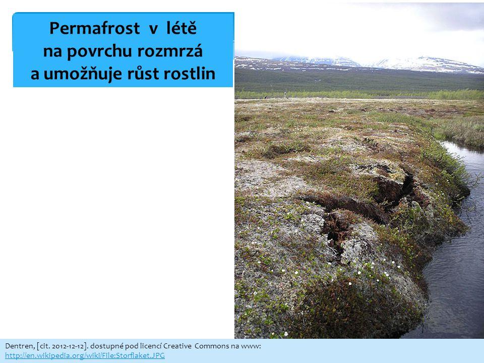 Dentren, [cit. 2012-12-12]. dostupné pod licencí Creative Commons na www: http://en.wikipedia.org/wiki/File:Storflaket.JPG Permafrost v létě na povrch