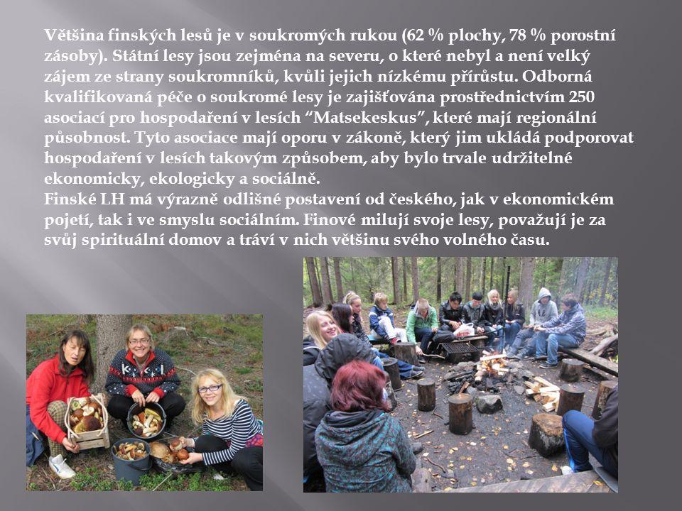 Většina finských lesů je v soukromých rukou (62 % plochy, 78 % porostní zásoby). Státní lesy jsou zejména na severu, o které nebyl a není velký zájem