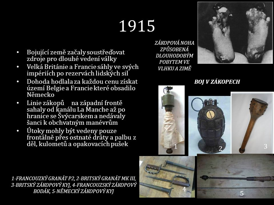 1915 • Bojující země začaly soustřeďovat zdroje pro dlouhé vedení války • Velká Británie a Francie sáhly ve svých impériích po rezervách lidských sil