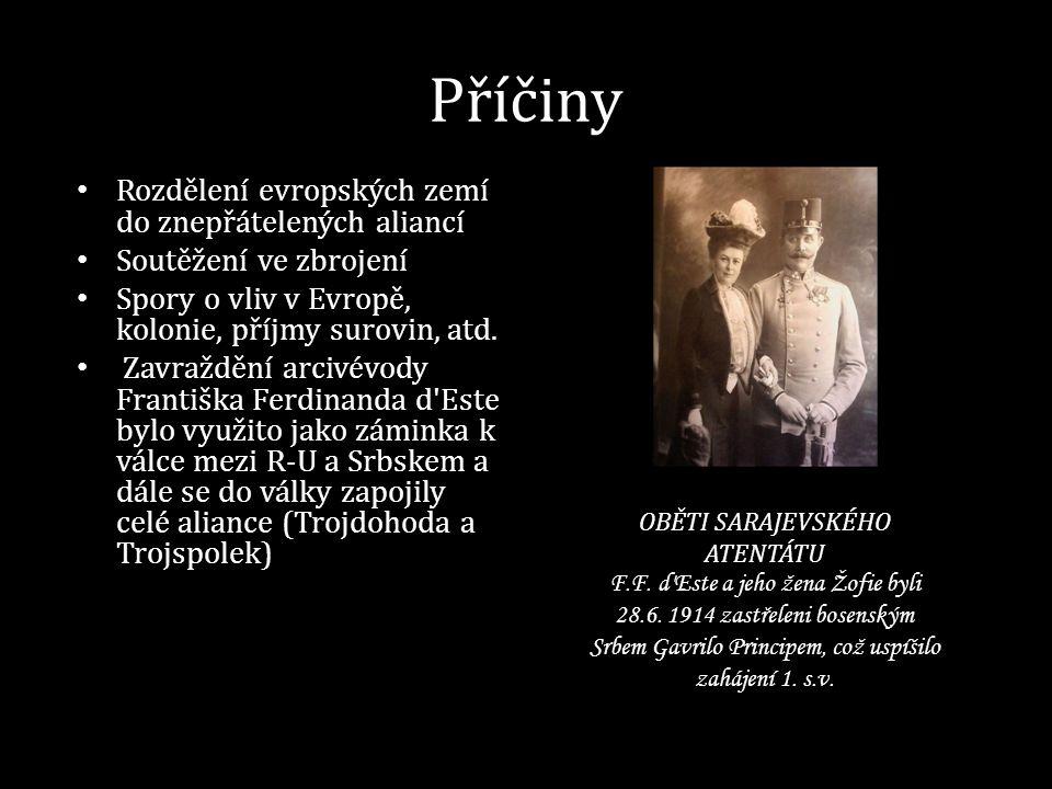 1916 ZÁPADNÍ FRONTA OFENZIVA NA SOMMĚ (16.7.-18.11.