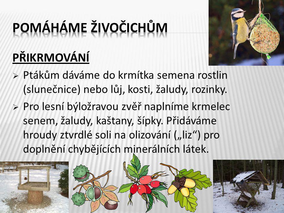 PŘIKRMOVÁNÍ  Ptákům dáváme do krmítka semena rostlin (slunečnice) nebo lůj, kosti, žaludy, rozinky.  Pro lesní býložravou zvěř naplníme krmelec sene