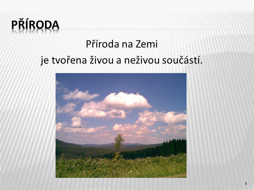 INTERNET:  [cit.2012-09-01].