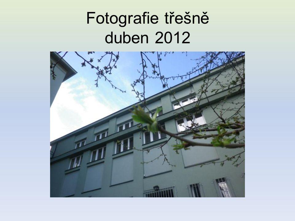 Fotografie třešně duben 2012