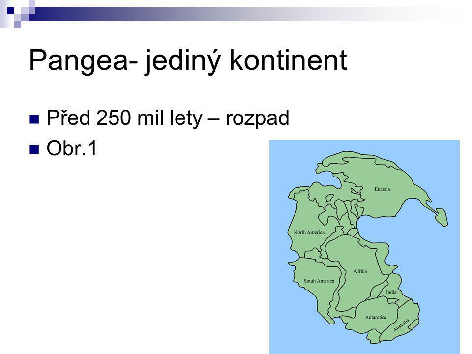 Pangea- jediný kontinent  Před 250 mil lety – rozpad  Obr.1