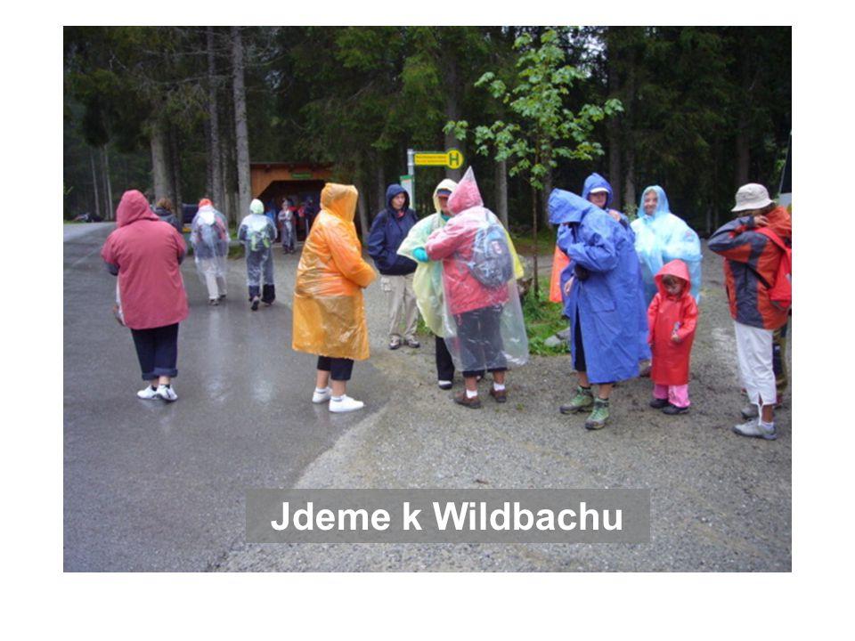 Jdeme k Wildbachu