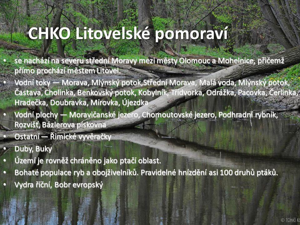 • se nachází na severu střední Moravy mezi městy Olomouc a Mohelnice, přičemž přímo prochází městem Litovel. • Vodní toky — Morava, Mlýnský potok,Stře