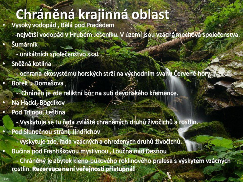 Přírodní rezervace • Vysoký vodopád, Bělá pod Pradědem -největší vodopád v Hrubém Jeseníku. V území jsou vzácná mechová společenstva. -největší vodopá