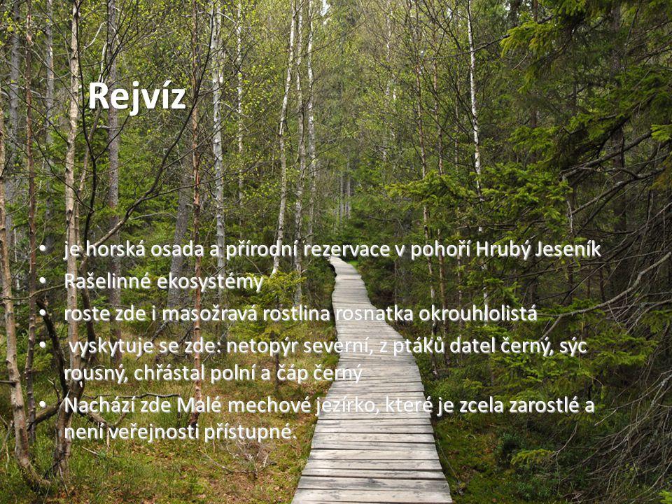 • je horská osada a přírodní rezervace v pohoří Hrubý Jeseník • Rašelinné ekosystémy • roste zde i masožravá rostlina rosnatka okrouhlolistá • vyskytu