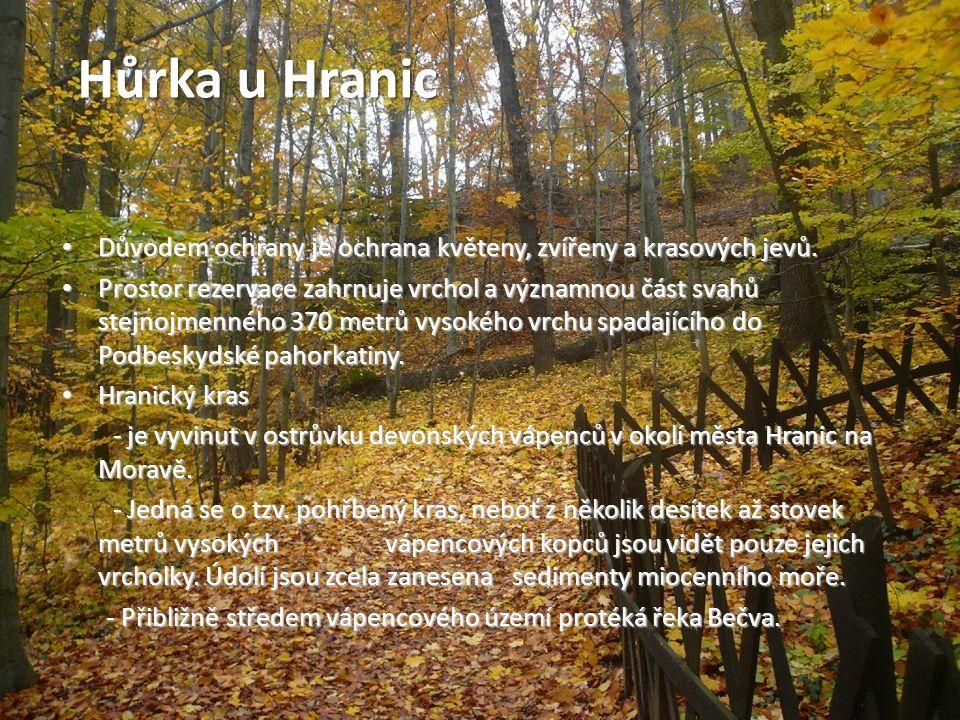 http://cs.wikipedia.org/wiki/Rejvíz http://cs.wikipedia.org/wiki/Chráněná_krajinná _oblast_Jeseníky http://cs.wikipedia.org/wiki/Hůrka_u_Hranic http://cs.wikipedia.org/wiki/Litovelské_Pomora ví http://olomoucky.kraj.cz/encyklopedie/seznam.