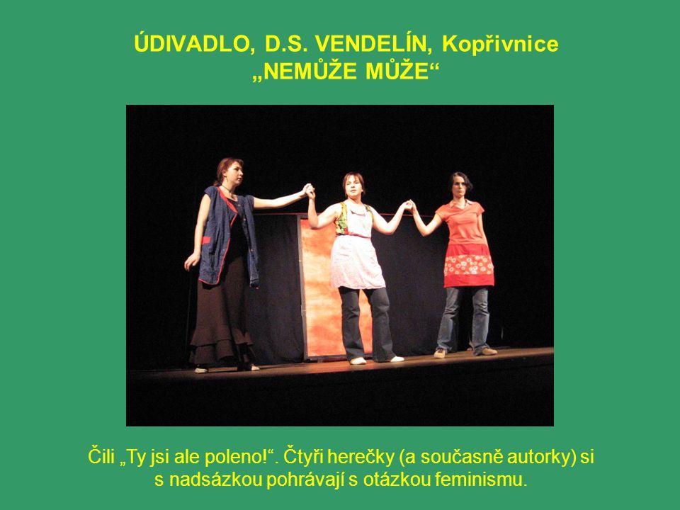 """ÚDIVADLO, D.S. VENDELÍN, Kopřivnice """"NEMŮŽE MŮŽE"""" Čili """"Ty jsi ale poleno!"""". Čtyři herečky (a současně autorky) si s nadsázkou pohrávají s otázkou fem"""