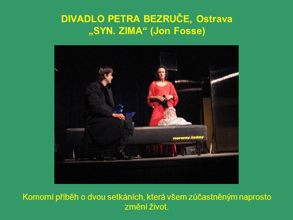 """DIVADLO PETRA BEZRUČE, Ostrava """"SYN. ZIMA"""" (Jon Fosse) Komorní příběh o dvou setkáních, která všem zúčastněným naprosto změní život."""
