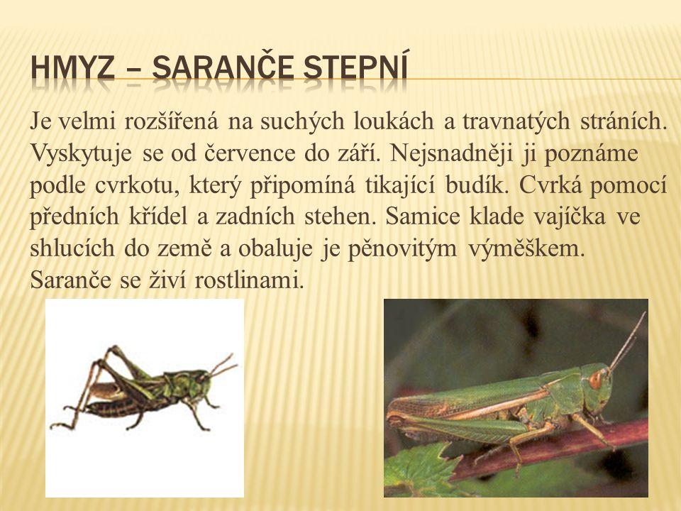 Je velmi rozšířená na suchých loukách a travnatých stráních.
