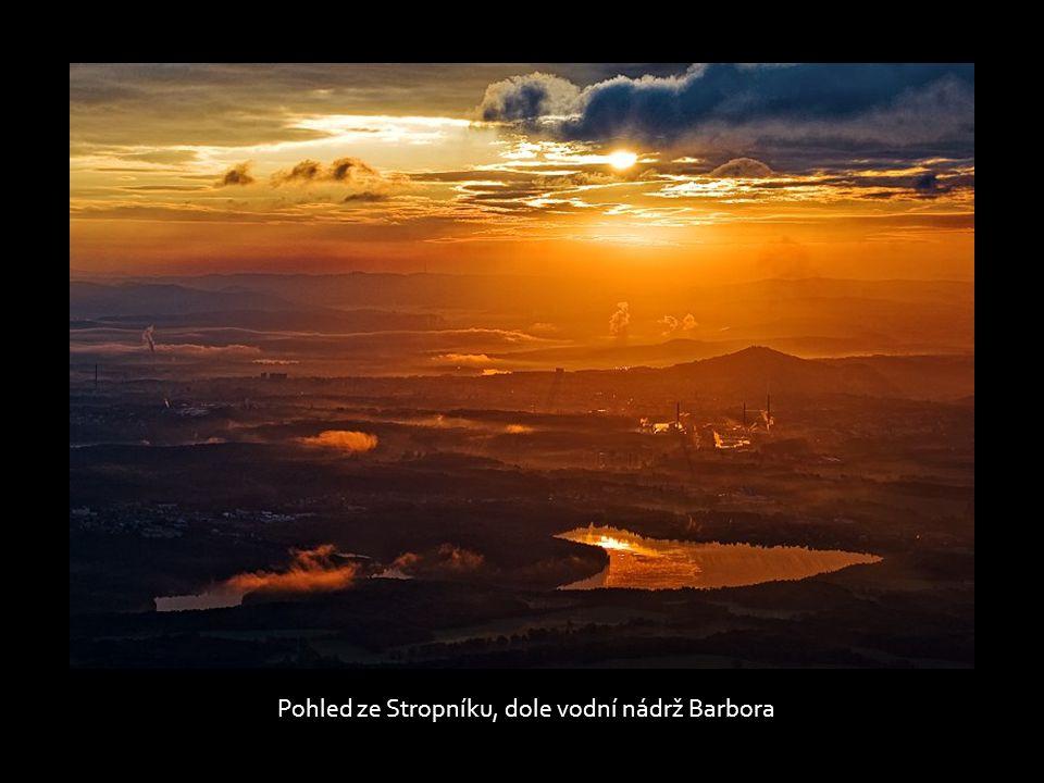 Vrchol hory Stropník, 856 m n.m., Krušné hory