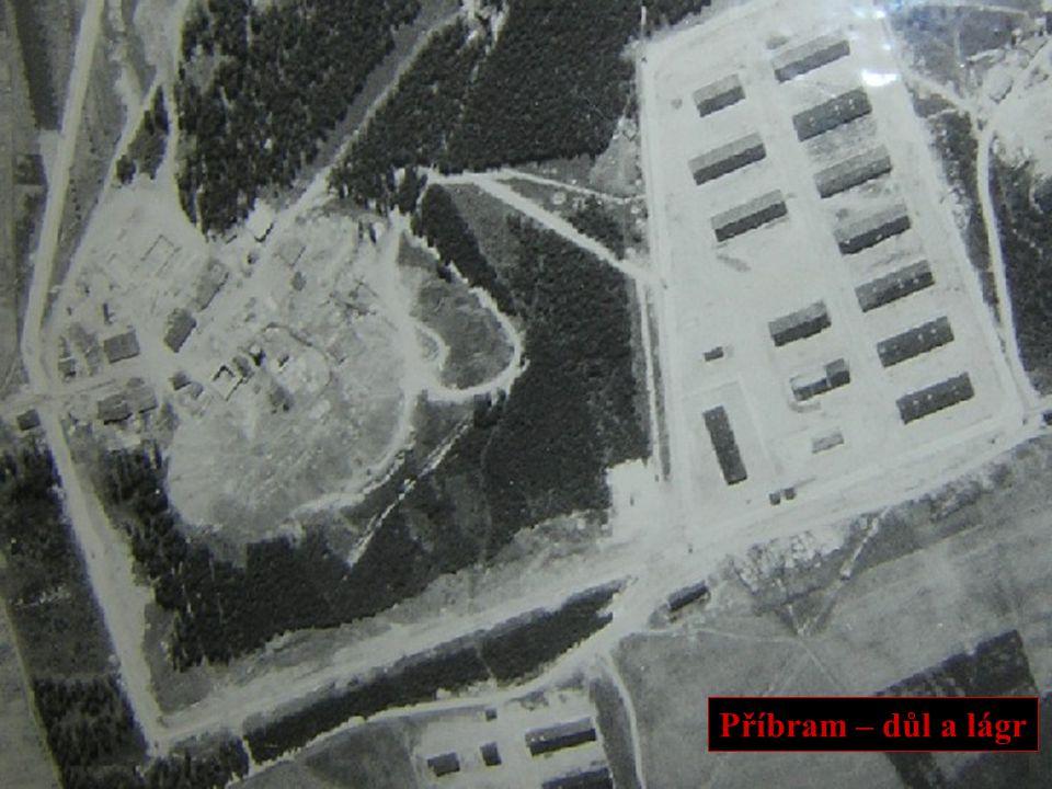 POČTY VĚZNĚNÝCH •1950-60 se odhaduje na 30 000 úrazů na uranu, z toho 439 smrtelných.