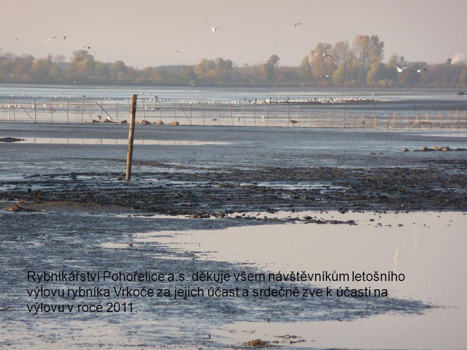 Rybníkářství Pohořelice a.s. děkuje všem návštěvníkům letošního výlovu rybníka Vrkoče za jejich účast a srdečně zve k účasti na výlovu v roce 2011.