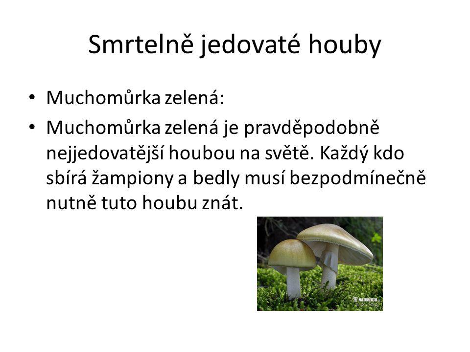 Smrtelně jedovaté houby • Muchomůrka zelená: • Muchomůrka zelená je pravděpodobně nejjedovatější houbou na světě. Každý kdo sbírá žampiony a bedly mus