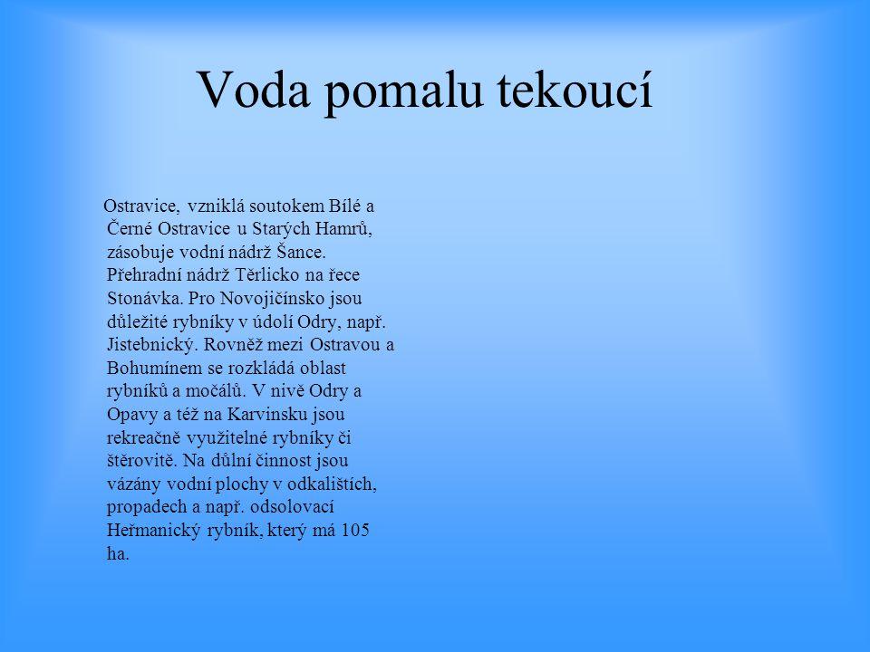Voda pomalu tekoucí Ostravice, vzniklá soutokem Bílé a Černé Ostravice u Starých Hamrů, zásobuje vodní nádrž Šance. Přehradní nádrž Těrlicko na řece S