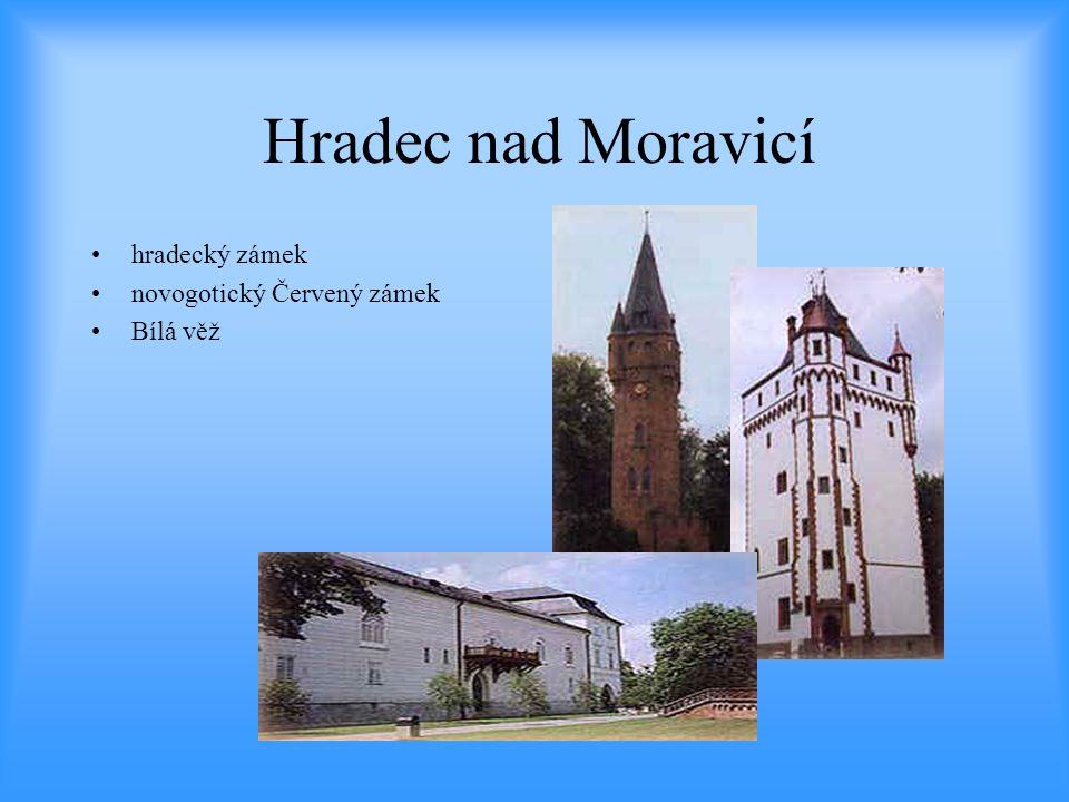 Hradec nad Moravicí •hradecký zámek •novogotický Červený zámek •Bílá věž