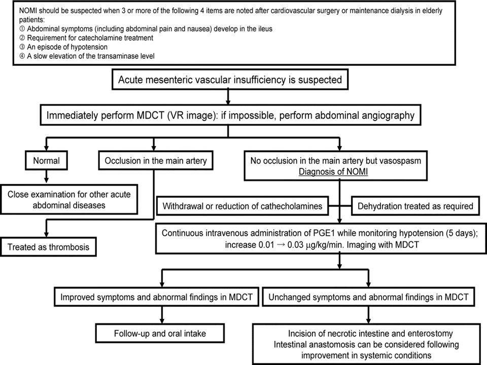 Terapie - obecná Parenterální přísun tekutin – bilance dle diurézy a CŽT Léčba kardiovaskulárního onemocnění (IM,selh.,arytmie) Nasogastrická sonda Kyslík Širokospektrá ATB s pokrytím anaerobní flóry od začátku (klindamycin, tikarcilin, metronidazol,cefoxitin,meropenem) Léčba bolesti (Morphin) Pokud nutné vasopresory – Dopamin v niž.d.