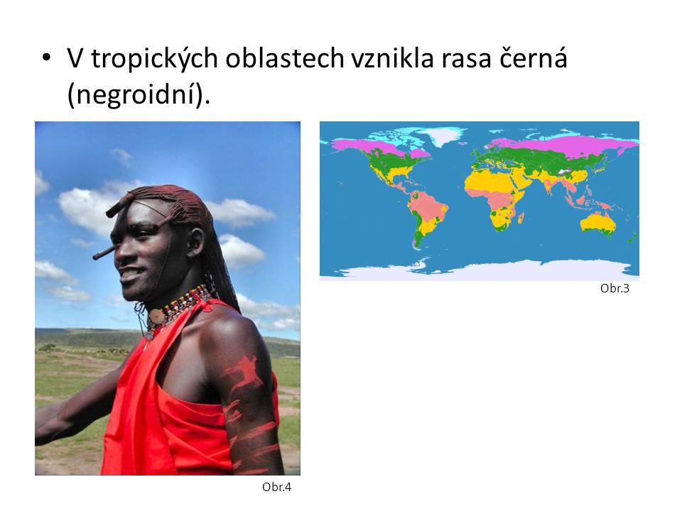 • V tropických oblastech vznikla rasa černá (negroidní). Obr.4 Obr.3