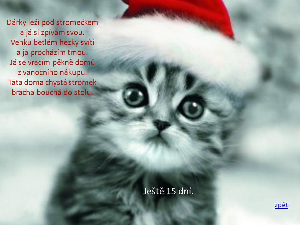 O vánocích se lidé usmívají ale stromky mnohé umírají.