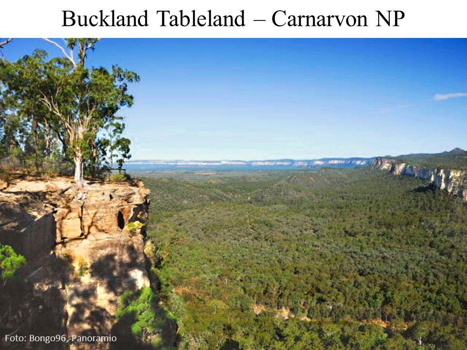 Buckland Tableland – Carnarvon NP Foto: Bongo96, Panoramio
