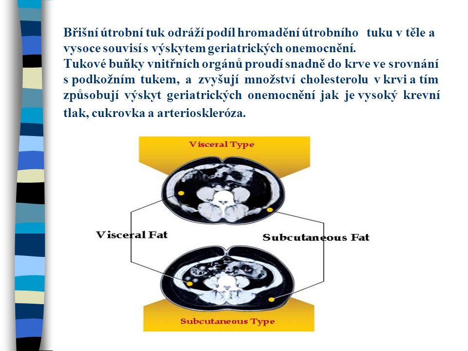 Břišní útrobní tuk odráží podíl hromadění útrobního tuku v těle a vysoce souvisí s výskytem geriatrických onemocnění. Tukové buňky vnitřních orgánů pr