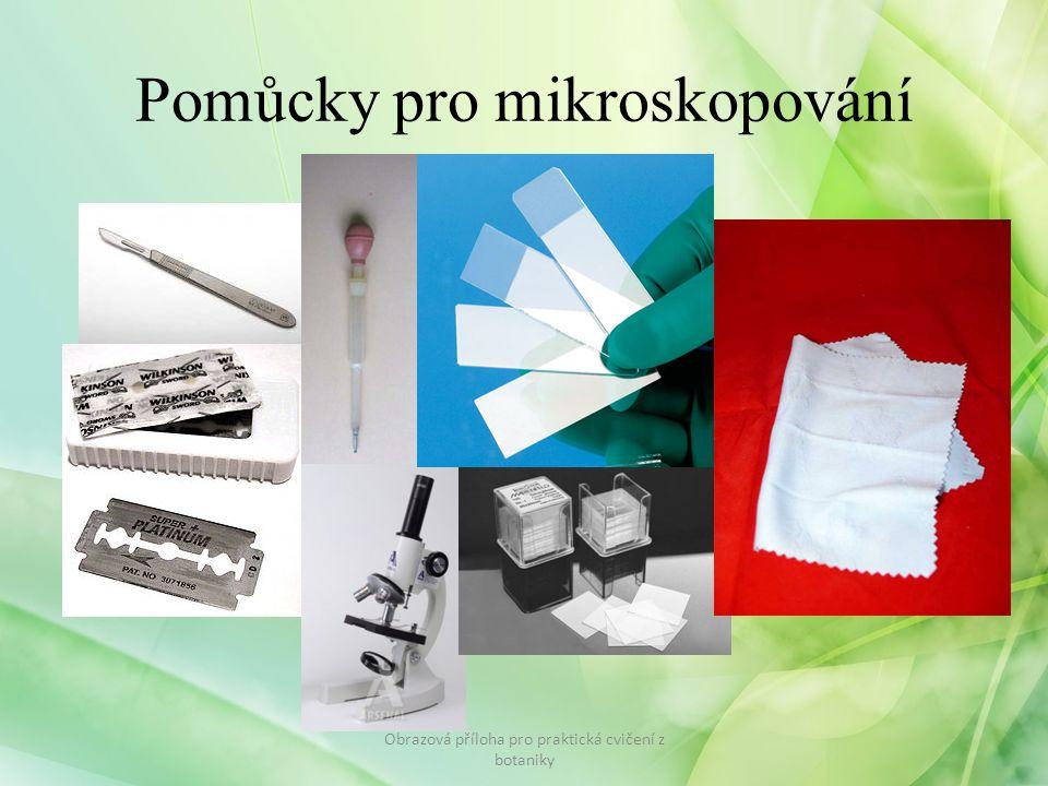 Pomůcky pro mikroskopování Obrazová příloha pro praktická cvičení z botaniky