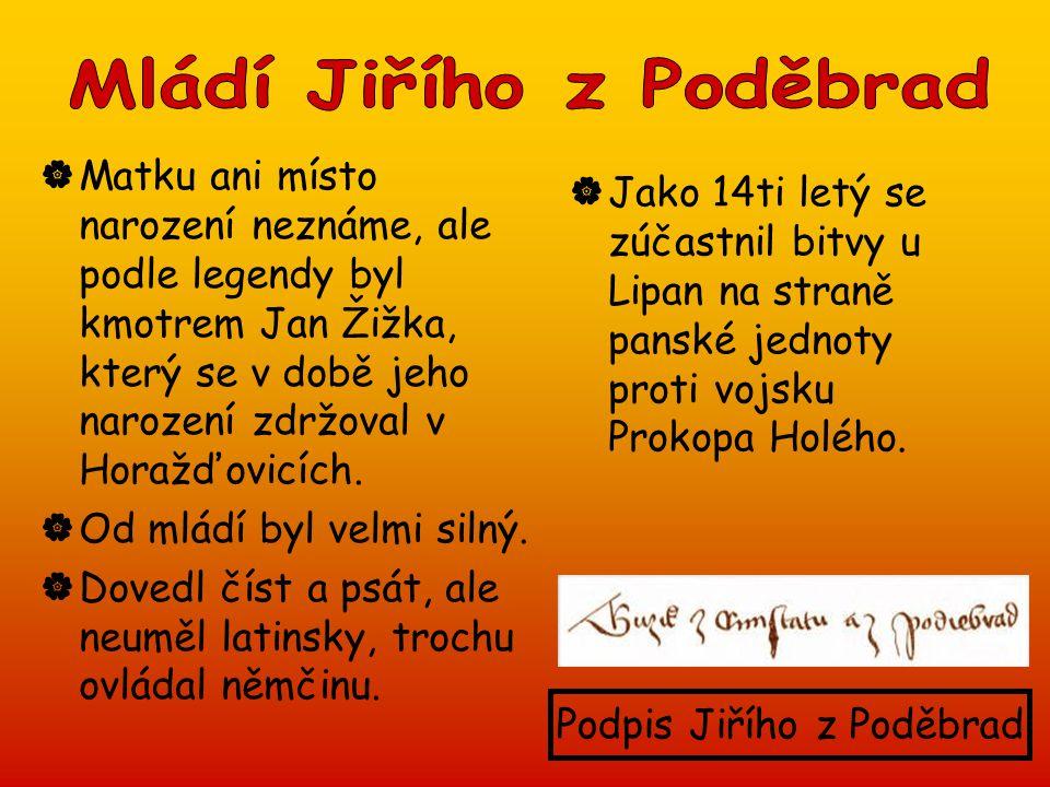  Matku ani místo narození neznáme, ale podle legendy byl kmotrem Jan Žižka, který se v době jeho narození zdržoval v Horažďovicích.  Od mládí byl ve