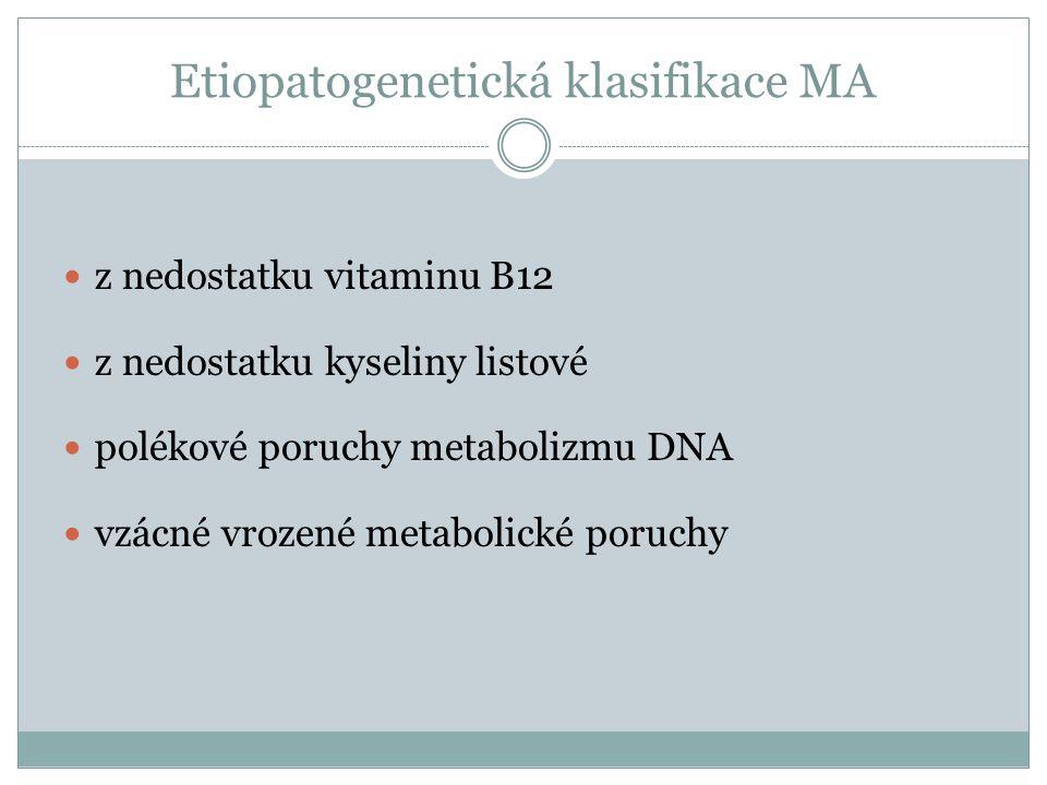 Etiopatogenetická klasifikace MA  z nedostatku vitaminu B12  z nedostatku kyseliny listové  polékové poruchy metabolizmu DNA  vzácné vrozené metab