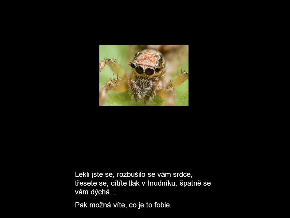 Fobie dělíme na 2 druhy