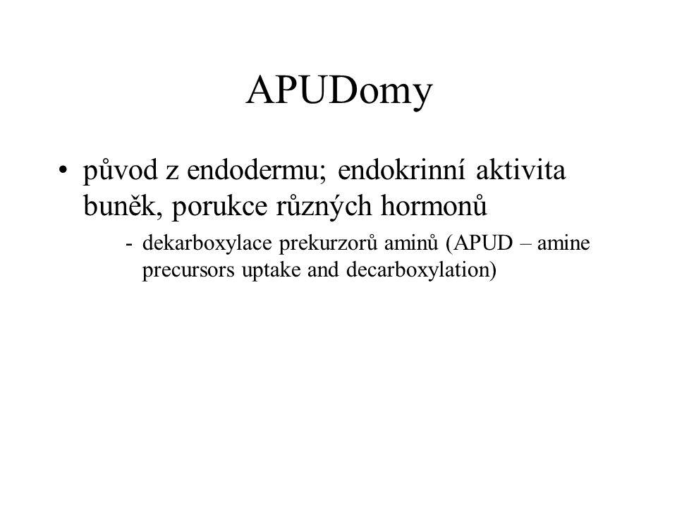 APUDomy •původ z endodermu; endokrinní aktivita buněk, porukce různých hormonů -dekarboxylace prekurzorů aminů (APUD – amine precursors uptake and dec