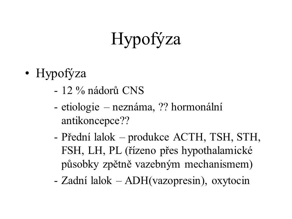 Hypofýza •Hypofýza -12 % nádorů CNS -etiologie – neznáma, ?? hormonální antikoncepce?? -Přední lalok – produkce ACTH, TSH, STH, FSH, LH, PL (řízeno př