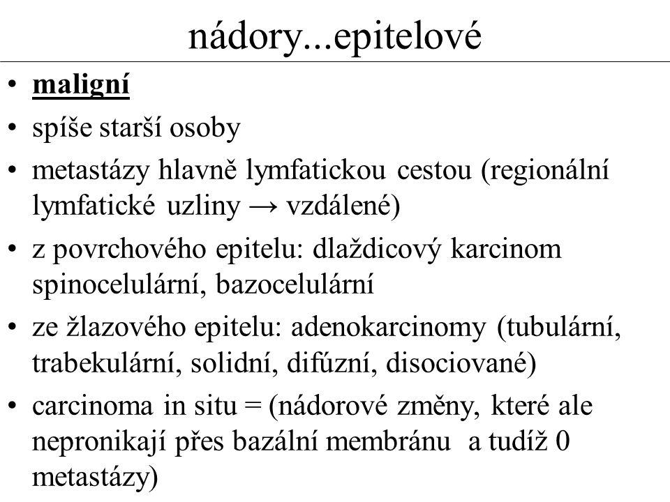 nádory...epitelové •maligní •spíše starší osoby •metastázy hlavně lymfatickou cestou (regionální lymfatické uzliny → vzdálené) •z povrchového epitelu: dlaždicový karcinom spinocelulární, bazocelulární •ze žlazového epitelu: adenokarcinomy (tubulární, trabekulární, solidní, difúzní, disociované) •carcinoma in situ = (nádorové změny, které ale nepronikají přes bazální membránu a tudíž 0 metastázy)