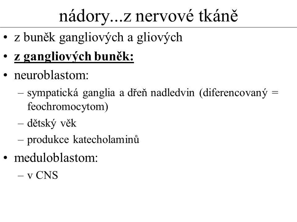 nádory...z nervové tkáně •z buněk gangliových a gliových •z gangliových buněk: •neuroblastom: –sympatická ganglia a dřeň nadledvin (diferencovaný = feochromocytom) –dětský věk –produkce katecholaminů •meduloblastom: –v CNS