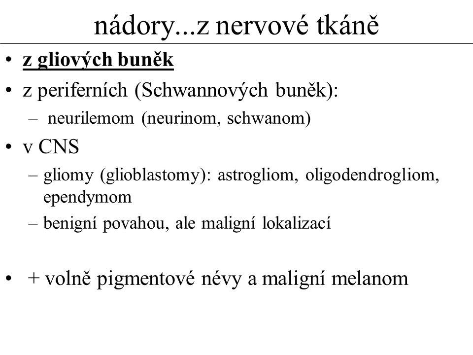 nádory...z nervové tkáně •z gliových buněk •z periferních (Schwannových buněk): – neurilemom (neurinom, schwanom) •v CNS –gliomy (glioblastomy): astrogliom, oligodendrogliom, ependymom –benigní povahou, ale maligní lokalizací • + volně pigmentové névy a maligní melanom