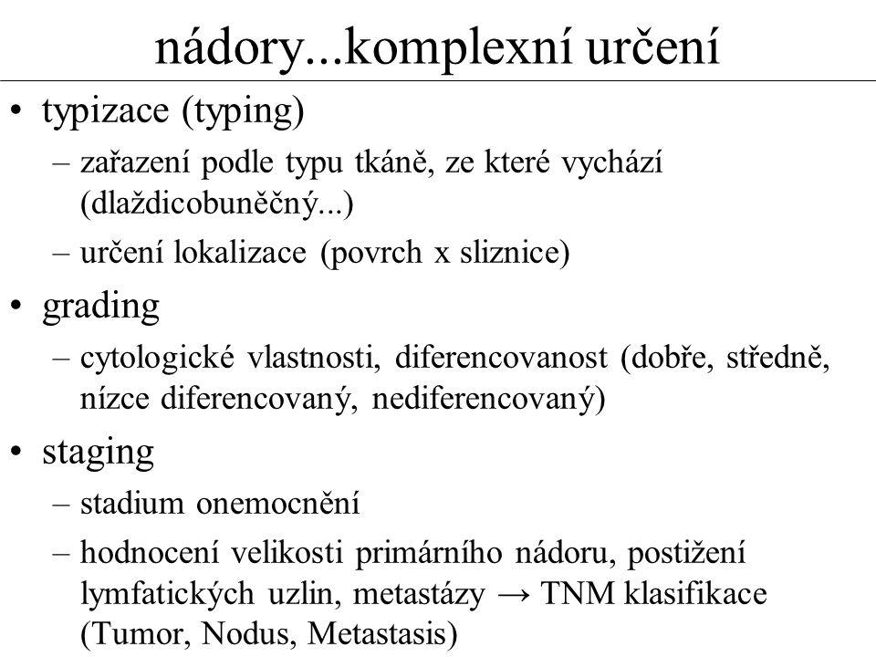 nádory...komplexní určení •typizace (typing) –zařazení podle typu tkáně, ze které vychází (dlaždicobuněčný...) –určení lokalizace (povrch x sliznice) •grading –cytologické vlastnosti, diferencovanost (dobře, středně, nízce diferencovaný, nediferencovaný) •staging –stadium onemocnění –hodnocení velikosti primárního nádoru, postižení lymfatických uzlin, metastázy → TNM klasifikace (Tumor, Nodus, Metastasis)