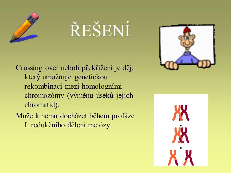ŘEŠENÍ Crossing over neboli překřížení je děj, který umožňuje genetickou rekombinaci mezi homologními chromozómy (výměnu úseků jejich chromatid).