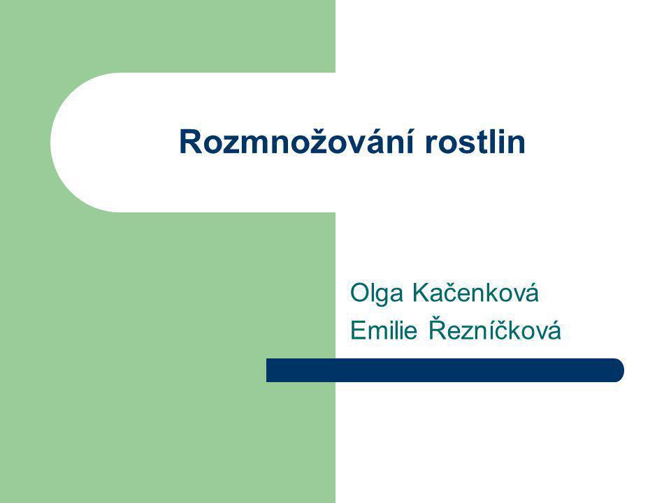 Rozmnožování rostlin Olga Kačenková Emilie Řezníčková