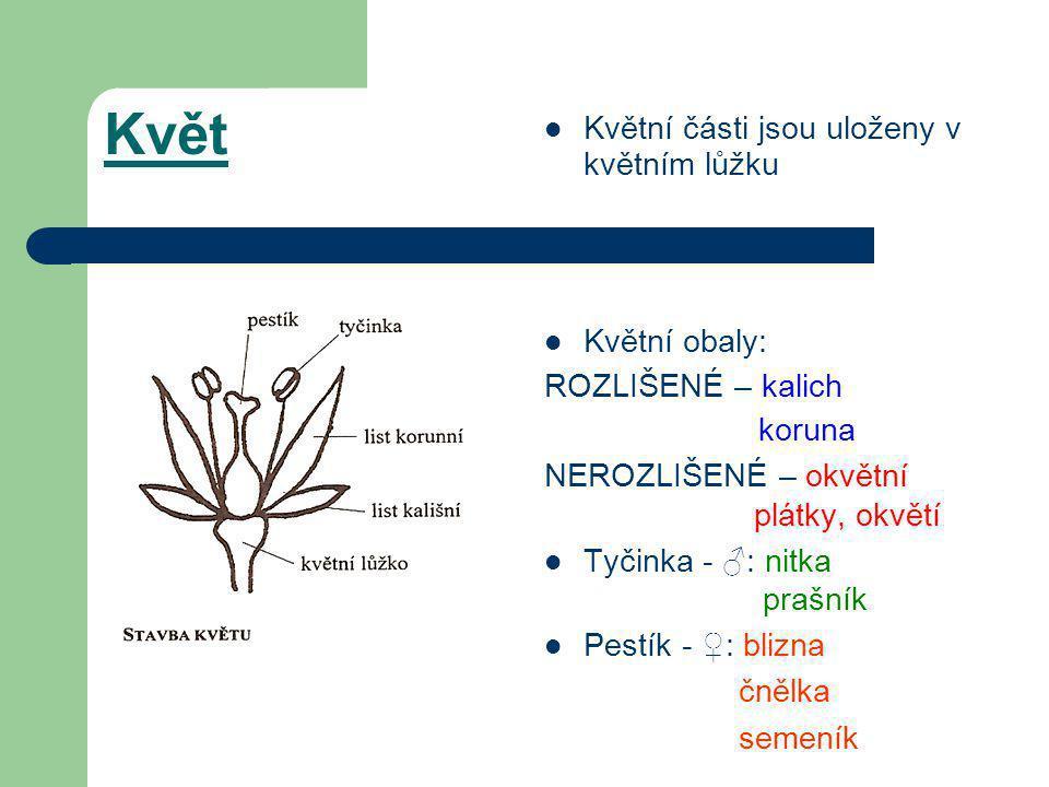  Květní části jsou uloženy v květním lůžku  Květní obaly: ROZLIŠENÉ – kalich koruna NEROZLIŠENÉ – okvětní plátky, okvětí  Tyčinka - ♂: nitka prašník  Pestík - ♀: blizna čnělka semeník Květ
