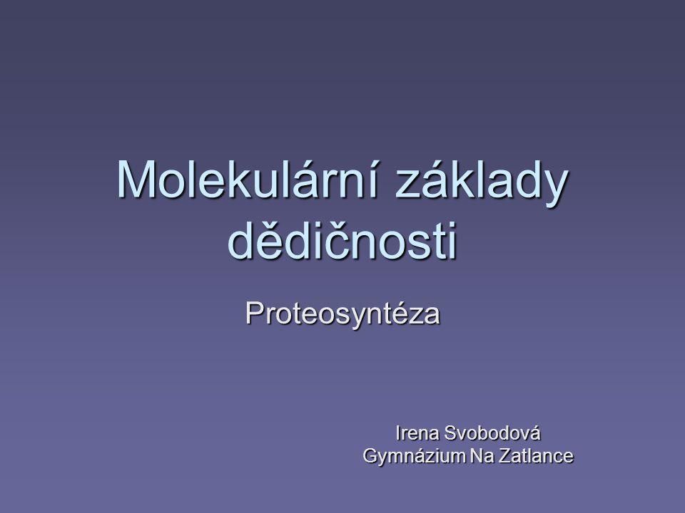 Molekulární základy dědičnosti Proteosyntéza Irena Svobodová Gymnázium Na Zatlance
