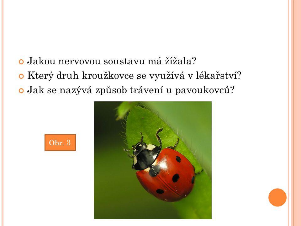 Jakou nervovou soustavu má žížala? Který druh kroužkovce se využívá v lékařství? Jak se nazývá způsob trávení u pavoukovců? Obr. 3